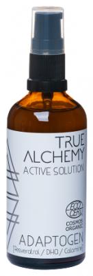 Тоник для лица Active Solution ADAPTOGEN TRUE ALCHEMY
